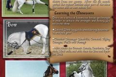 Horse Display